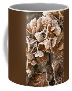 Frosted Hydrangea Coffee Mug
