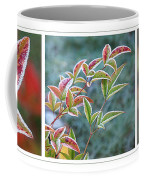 Frosty Leaves Coffee Mug