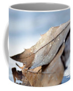 Frosty Leaves In The Morning Sunlight Coffee Mug