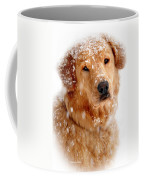 Frosty Mug Coffee Mug by Christina Rollo
