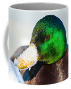 Mallard On Ice Coffee Mug