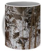 Frozen Dam Coffee Mug