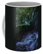 Frozen Garden Stream Coffee Mug