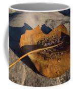 Frozen Raindrops Coffee Mug
