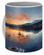 Frozen Reflections Coffee Mug