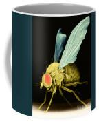 Fruit Fly Sem Coffee Mug