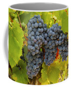 Fruit Of The Vine Imagine The Wine Coffee Mug