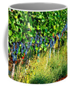 Fruit Of The Vine Coffee Mug by Kay Gilley