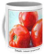 Fruit Of The Vine - Tomato - Vegetable Coffee Mug
