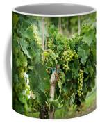 Fruit On The Vine Coffee Mug