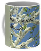 Fruit Tree Blooms Coffee Mug
