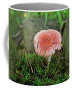 Fruiting Moss And Pink Mushroom Coffee Mug