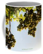 Fruits Of Nature Coffee Mug