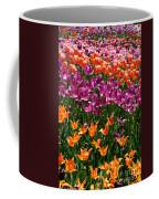 Fruity Tulips Coffee Mug