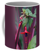 Fuchsia Delight Coffee Mug