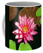 Fuchsia Pink Water Lilly Flower Floating In Pond Coffee Mug