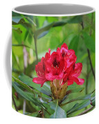 Fuchsia Rhododendron Moore State Park Coffee Mug
