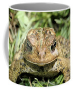 Full Frontal Coffee Mug