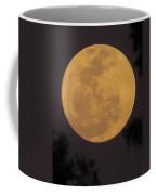 Full Moon II Coffee Mug
