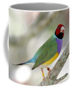 Full Of Color Coffee Mug