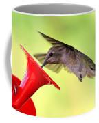 Fun Summer Hummingbird Coffee Mug