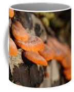 Fungus 2 Coffee Mug