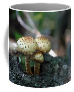 Fungus 8 Coffee Mug