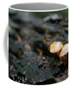 Fungus 9 Coffee Mug
