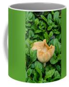 Fungus Among The Ajuga Coffee Mug