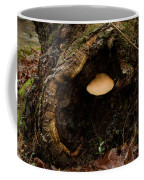 Fungus In A Knothole Coffee Mug