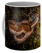 Fungus Coffee Mug