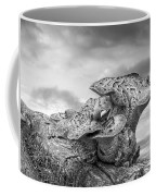Funky Fungi Black And White Coffee Mug