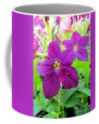 Funny Flower Faces Coffee Mug