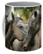 Funny Horses Coffee Mug