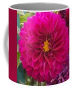 Fushia Coffee Mug