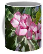 Fushia Oleander Near Phoenx Arizona 2 Coffee Mug