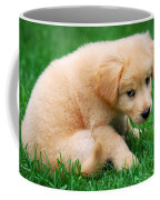 Fuzzy Golden Puppy Coffee Mug