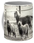 Fuzzy Ponies Coffee Mug