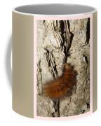 Fuzzy Was He Coffee Mug
