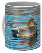 Gadwall Duck Drake Swimming Coffee Mug