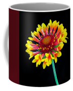 Gaillardia Arizona Sun Coffee Mug