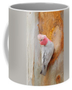 Galah 2am-29701 Coffee Mug