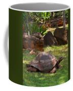 Galapagos Turtle At Honolulu Zoo Coffee Mug