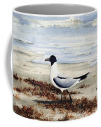 Galveston Gull Coffee Mug