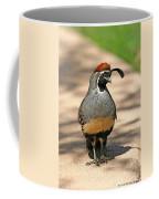 Gambles Quail Coffee Mug