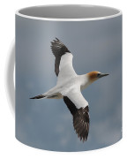 Gannet In Flight Coffee Mug