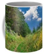 Gap Trail Coffee Mug
