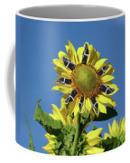 Garciacat Sunflower Coffee Mug