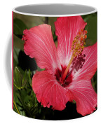 Garden Beauty Coffee Mug