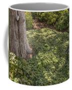 Garden Color At Woodward Park 21f Coffee Mug